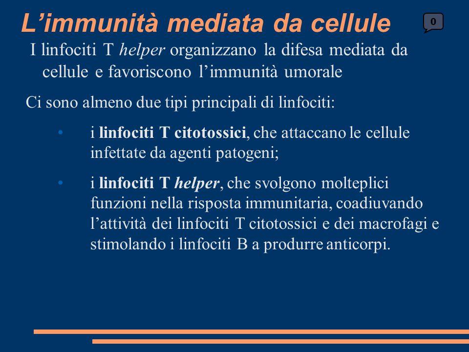 L'immunità mediata da cellule