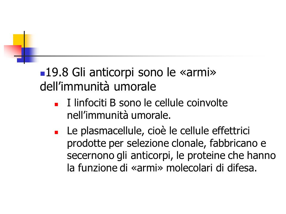 19.8 Gli anticorpi sono le «armi» dell'immunità umorale