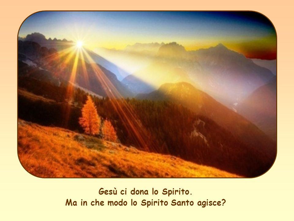 Gesù ci dona lo Spirito. Ma in che modo lo Spirito Santo agisce