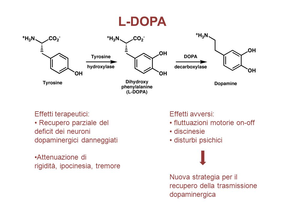 L-DOPA Effetti terapeutici: