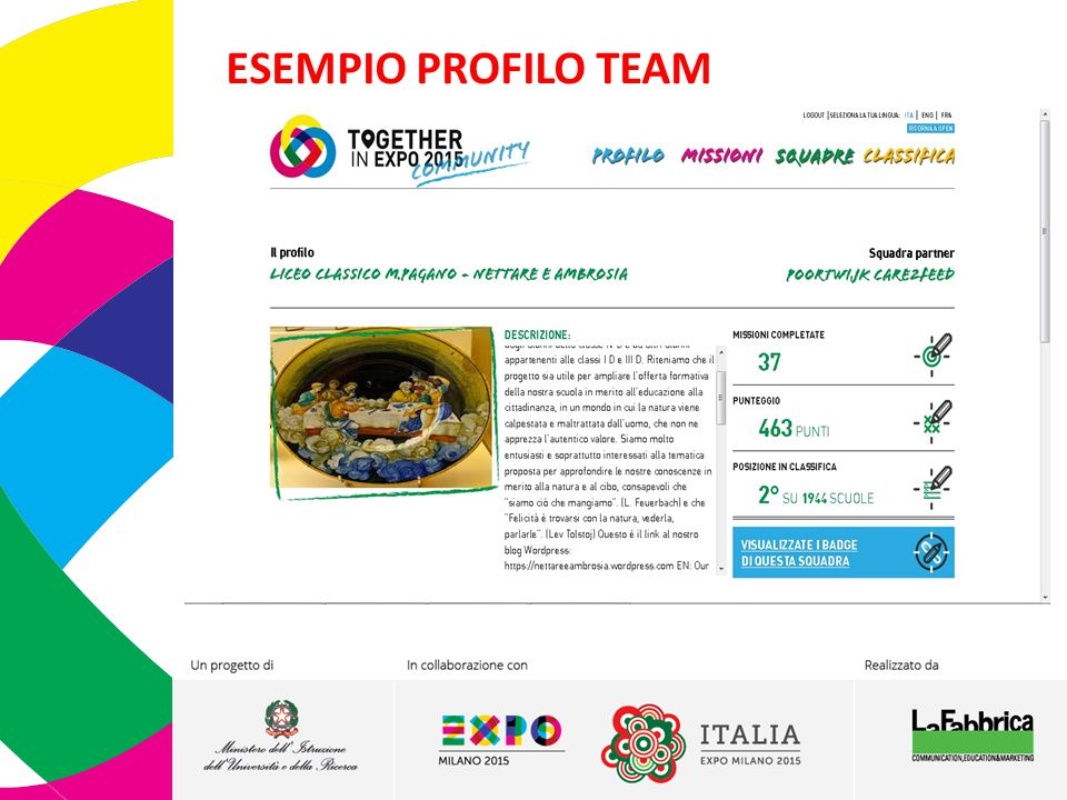 ESEMPIO PROFILO TEAM 7 7