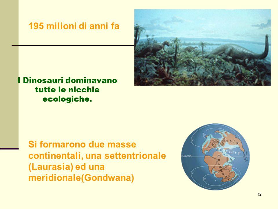 I Dinosauri dominavano tutte le nicchie ecologiche.