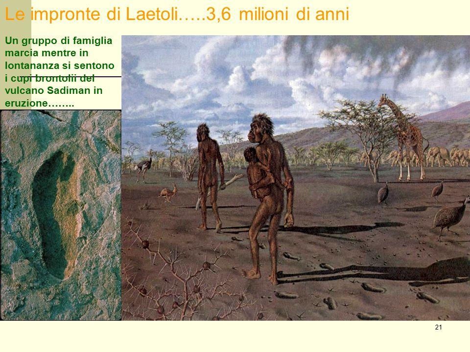 Le impronte di Laetoli…..3,6 milioni di anni