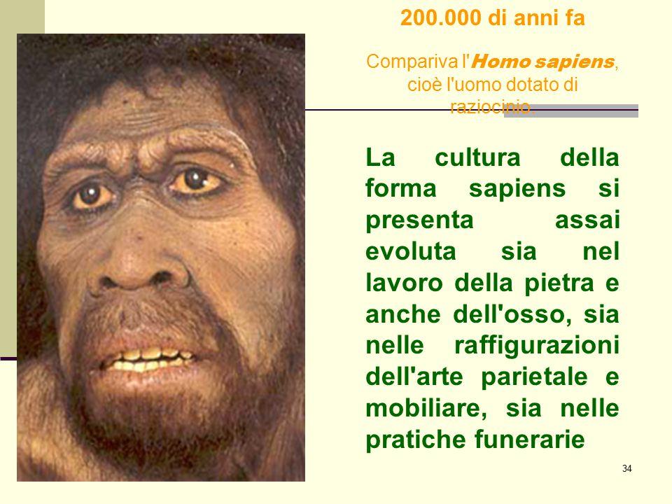 Compariva l Homo sapiens, cioè l uomo dotato di raziocinio.