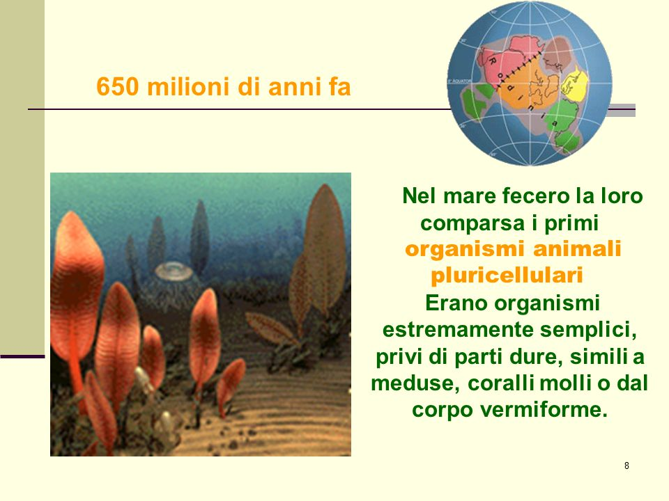 650 milioni di anni fa . Nel mare fecero la loro comparsa i primi
