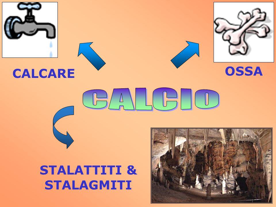 CALCARE OSSA CALCIO STALATTITI & STALAGMITI
