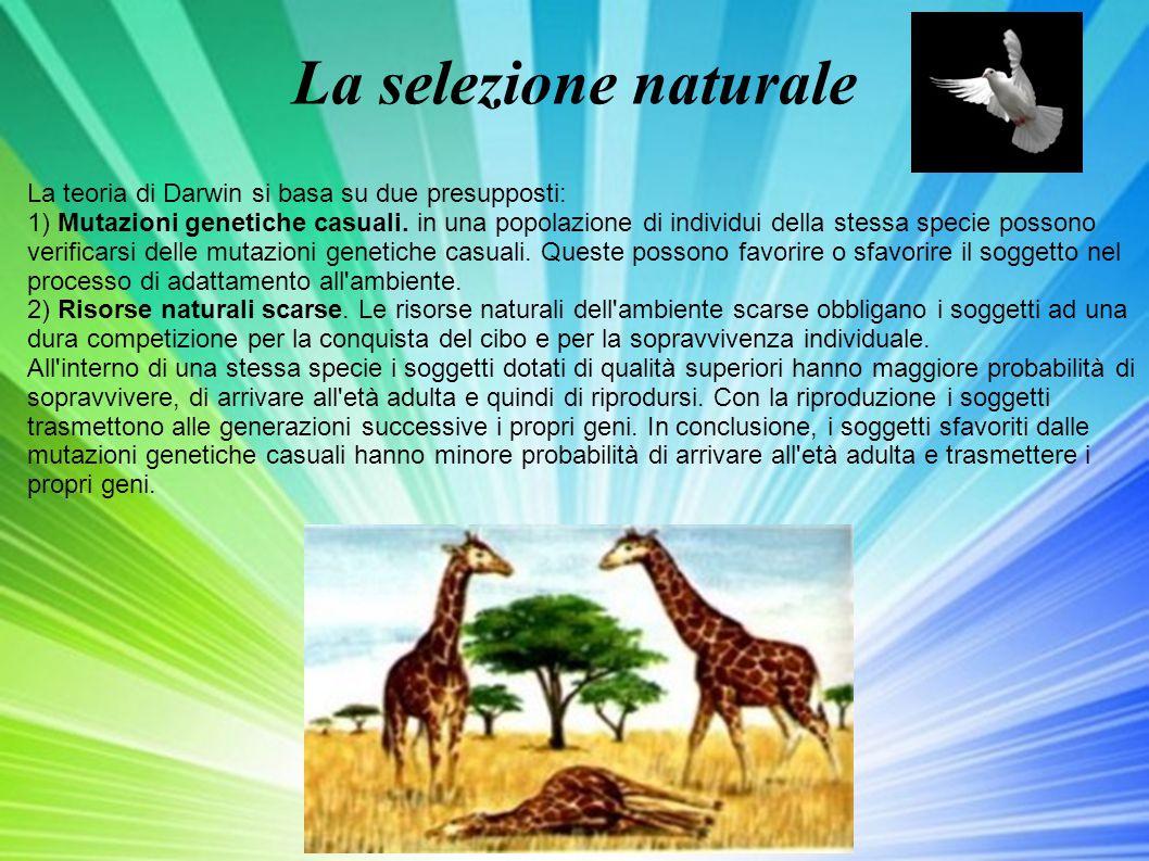 La selezione naturale La teoria di Darwin si basa su due presupposti: