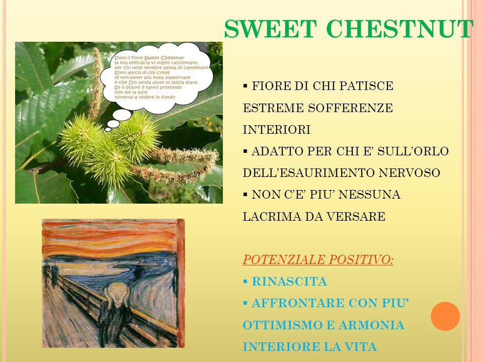 SWEET CHESTNUT FIORE DI CHI PATISCE ESTREME SOFFERENZE INTERIORI