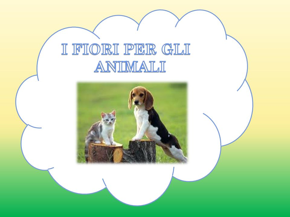 I FIORI PER GLI ANIMALI