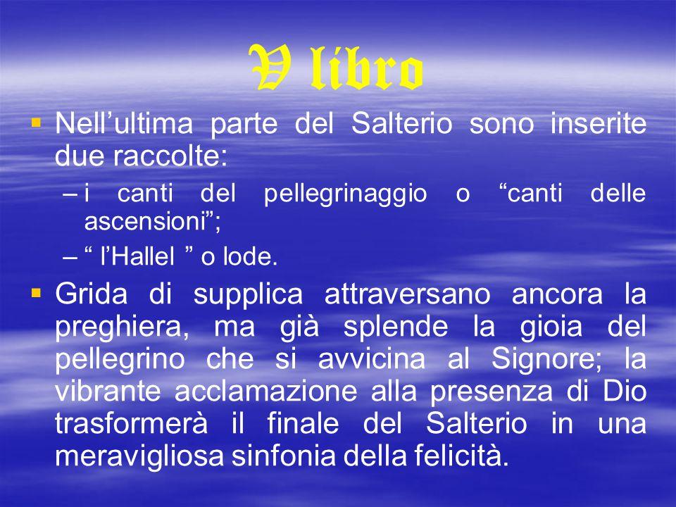 V libro Nell'ultima parte del Salterio sono inserite due raccolte: