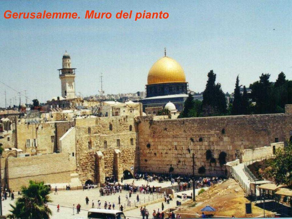 Gerusalemme. Muro del pianto