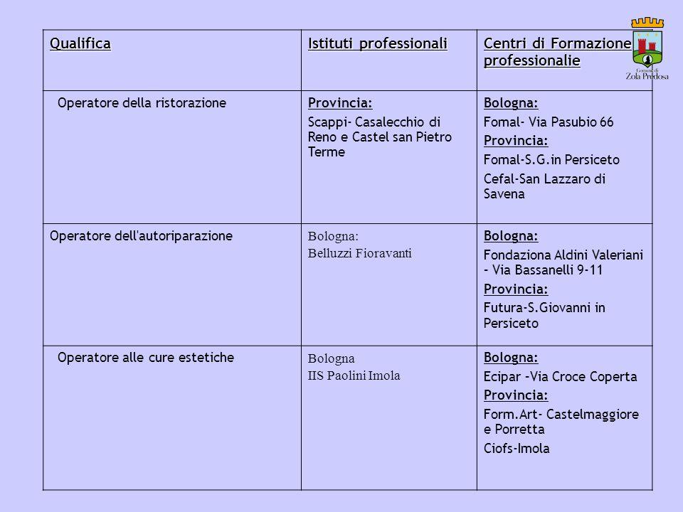 Istituti professionali Centri di Formazione professionalie