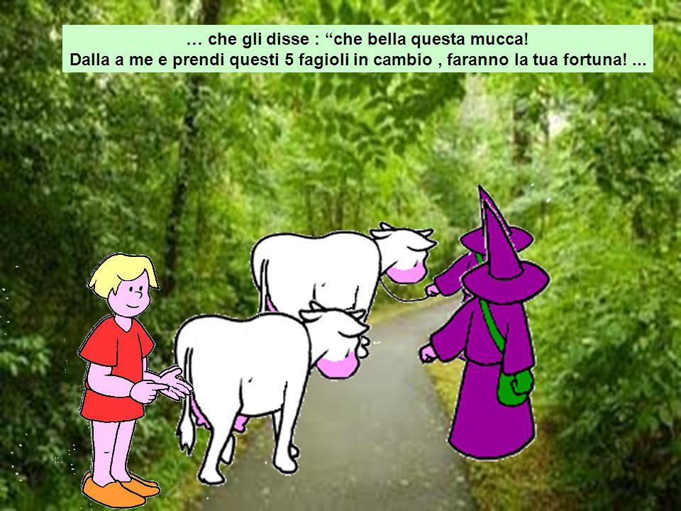 … che gli disse : che bella questa mucca!