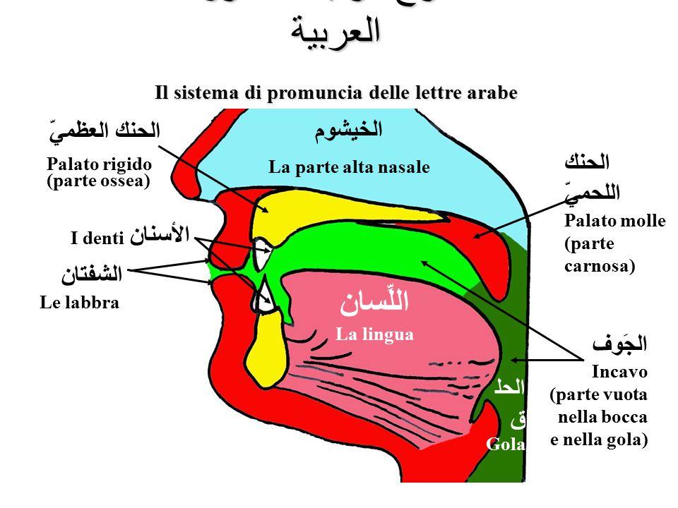 Il sistema di promuncia delle lettre arabe