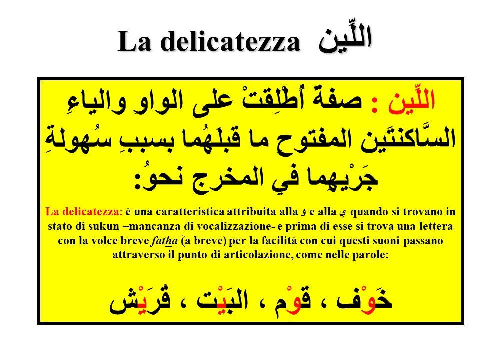اللِّين La delicatezza