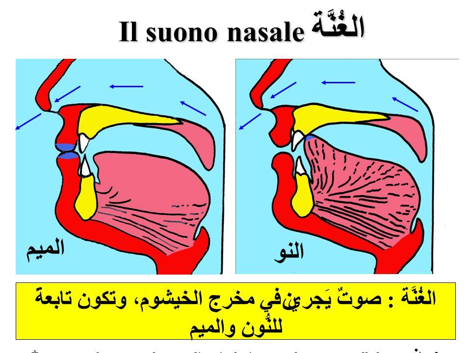 الغُنَّة Il suono nasale
