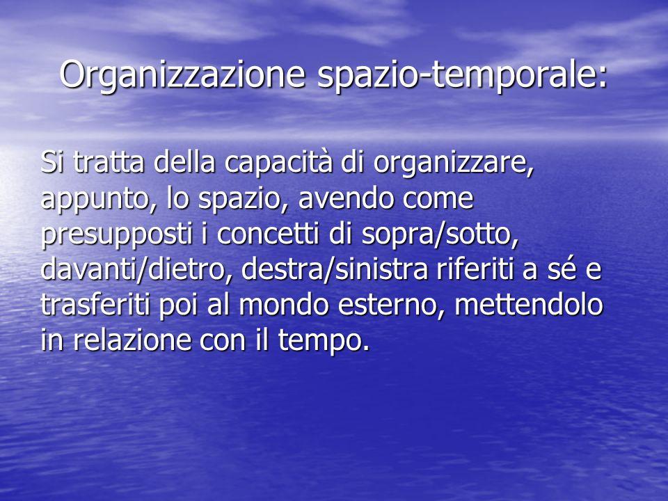 Organizzazione spazio-temporale: