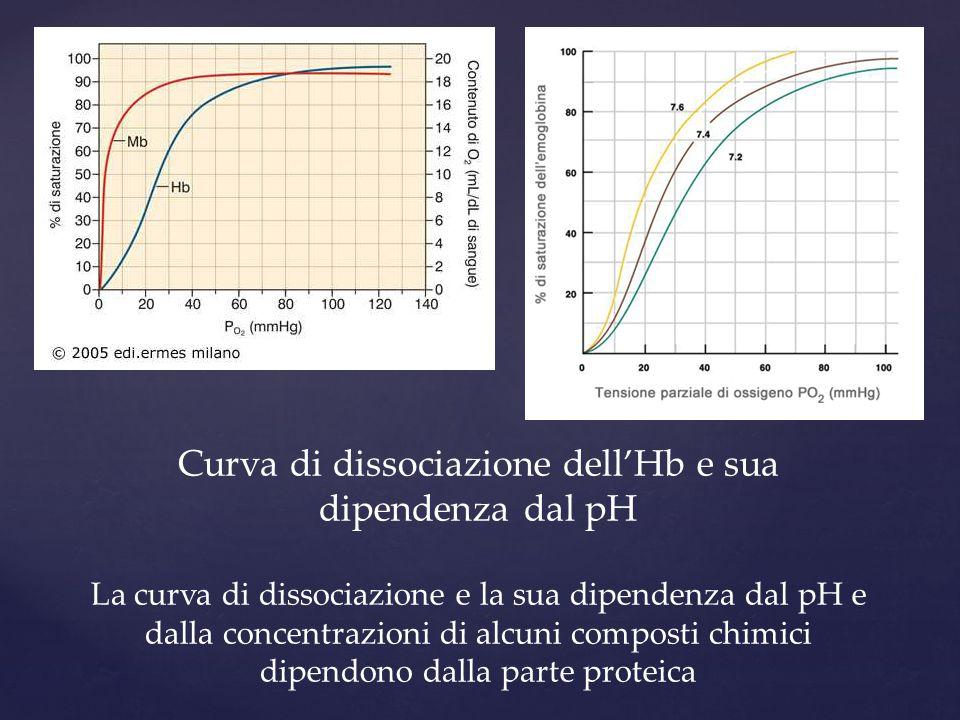 Curva di dissociazione dell'Hb e sua dipendenza dal pH