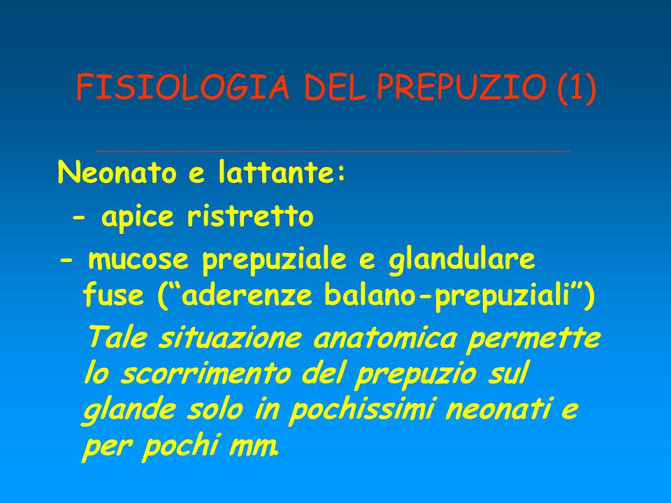 FISIOLOGIA DEL PREPUZIO (1)