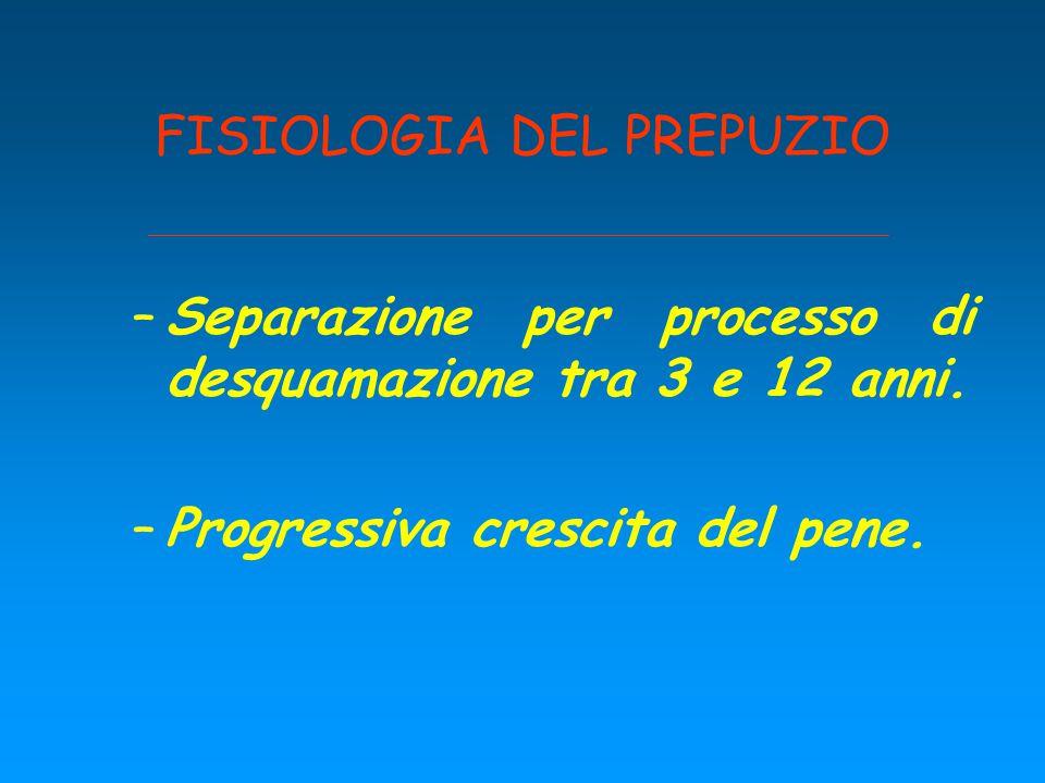 FISIOLOGIA DEL PREPUZIO