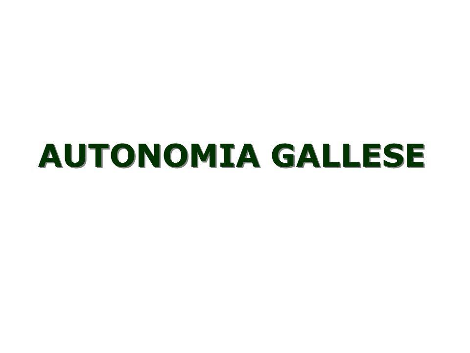 AUTONOMIA GALLESE