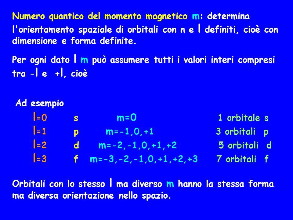 Numero quantico del momento magnetico m: determina l orientamento spaziale di orbitali con n e l definiti, cioè con dimensione e forma definite.