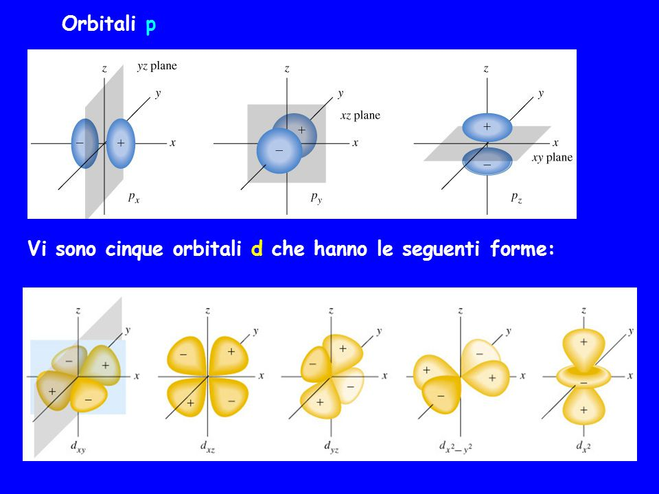 Orbitali p Vi sono cinque orbitali d che hanno le seguenti forme: