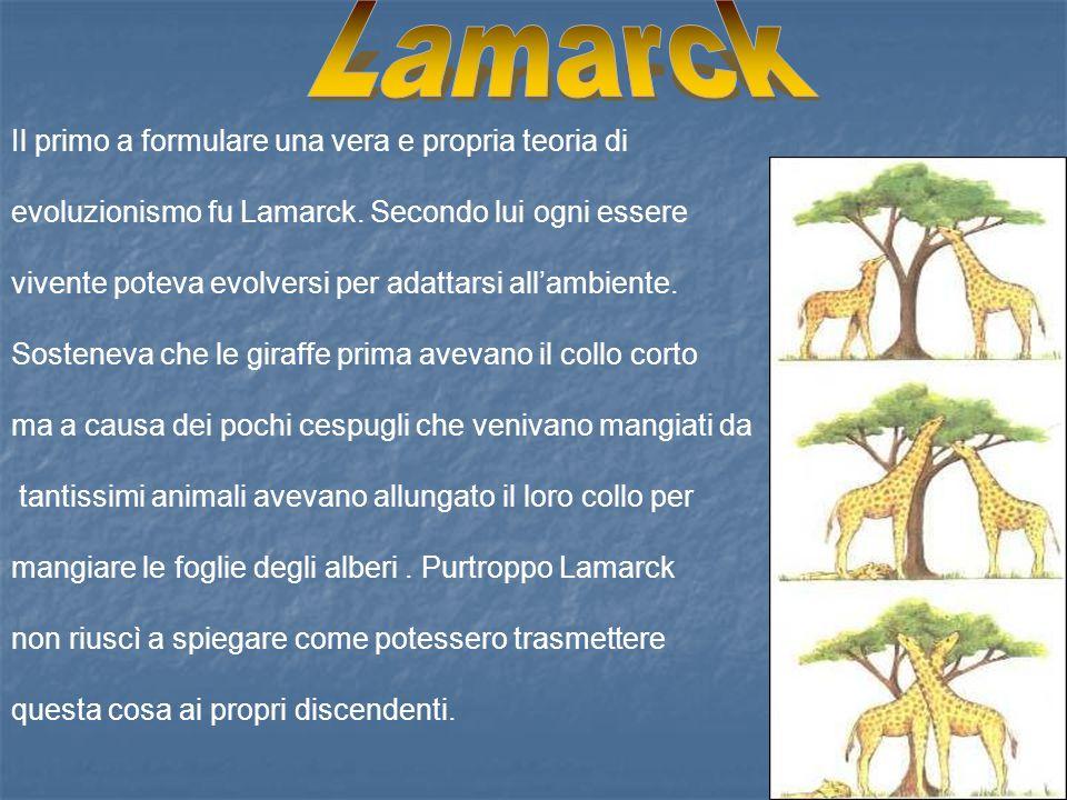 Lamarck Il primo a formulare una vera e propria teoria di