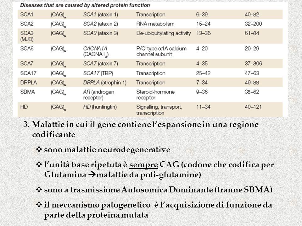 3. Malattie in cui il gene contiene l'espansione in una regione codificante