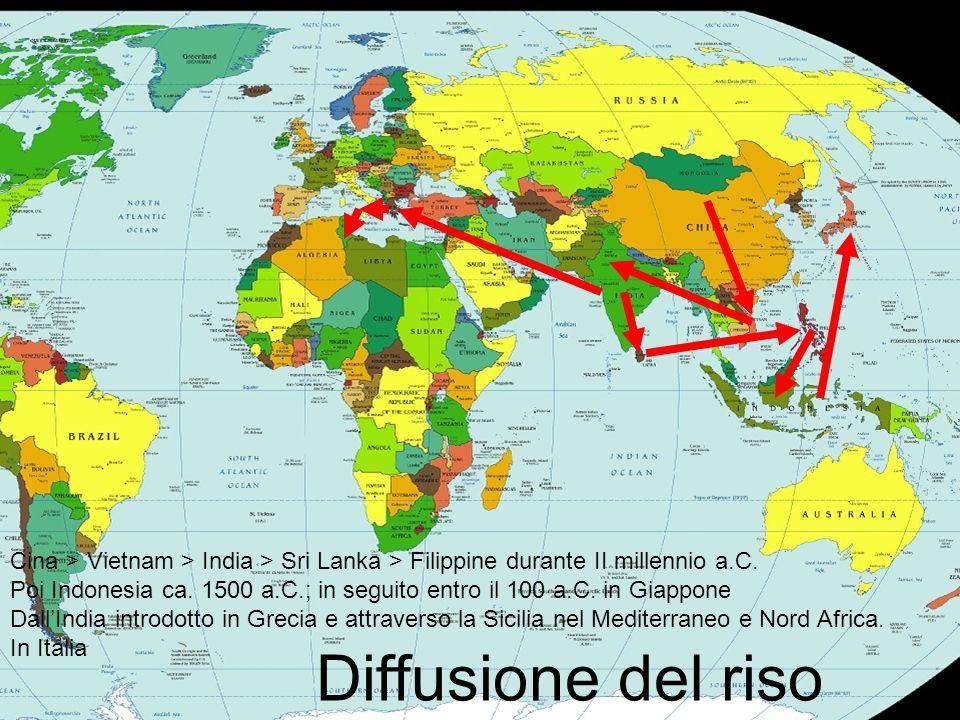 Cina > Vietnam > India > Sri Lanka > Filippine durante II millennio a.C.