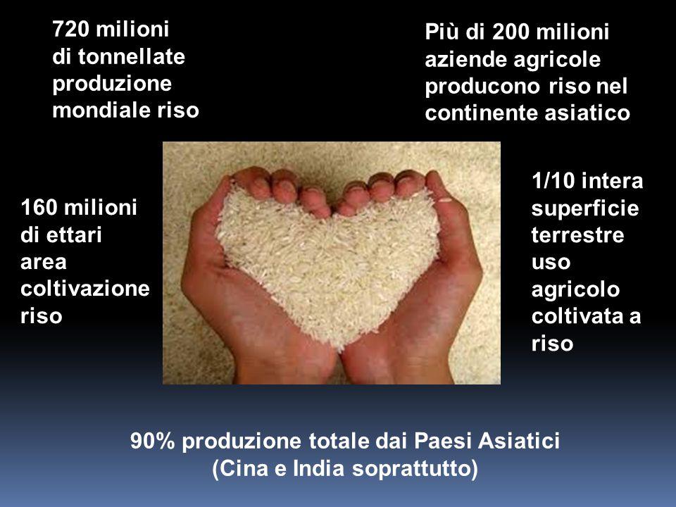 90% produzione totale dai Paesi Asiatici