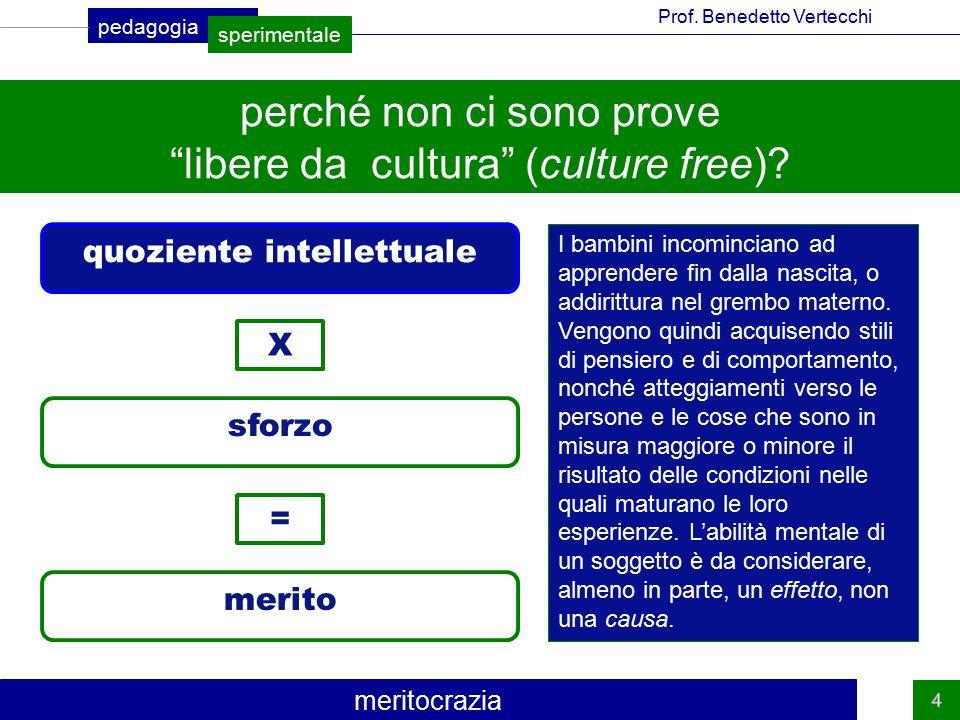 perché non ci sono prove libere da cultura (culture free)