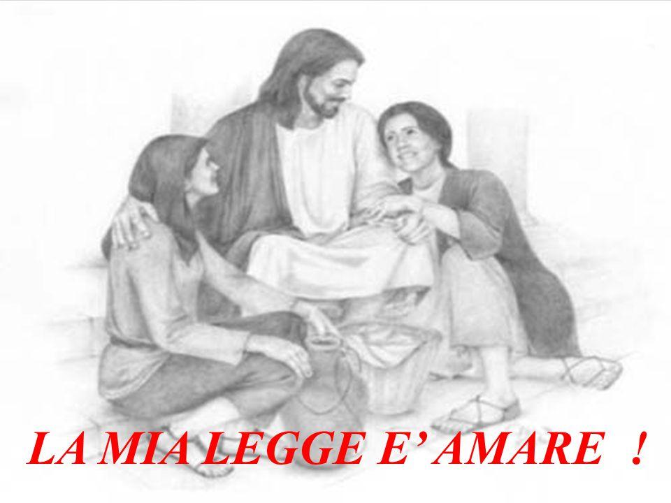 Questa è una rielaborazione sulle letture della Messa