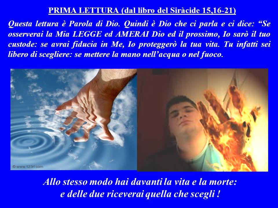 PRIMA LETTURA (dal libro del Siràcide 15,16-21)