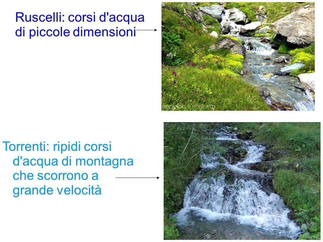 Ruscelli: corsi d acqua di piccole dimensioni