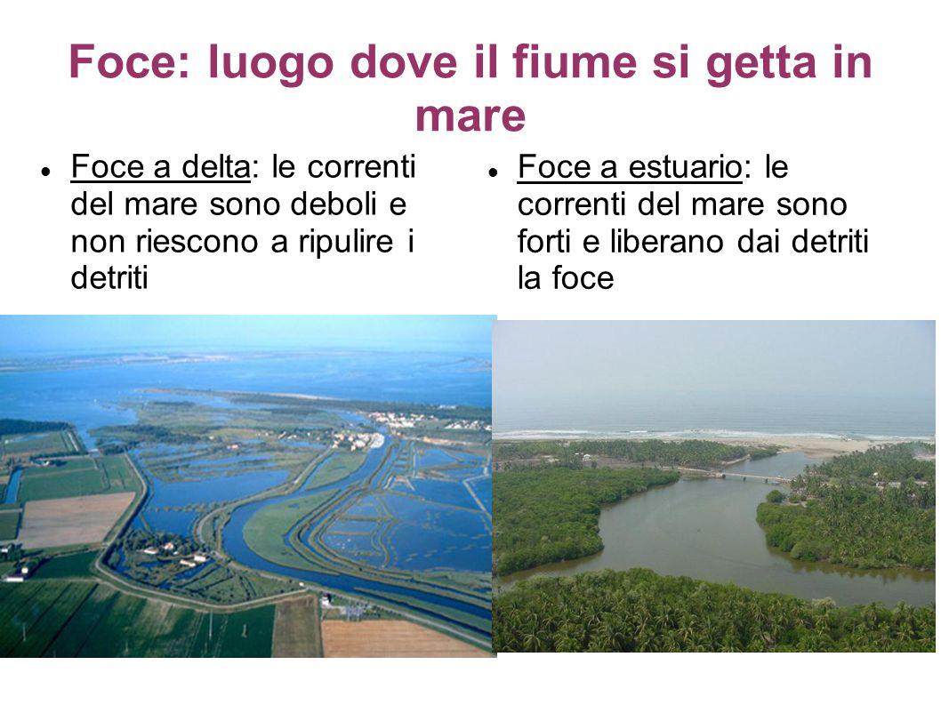 Foce: luogo dove il fiume si getta in mare