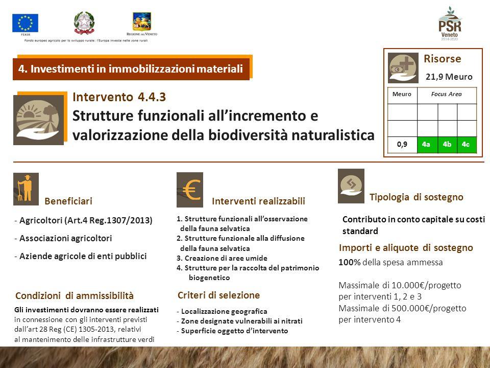 Risorse 4. Investimenti in immobilizzazioni materiali. 21,9 Meuro. Intervento. 4.4.3. Meuro. Focus Area.