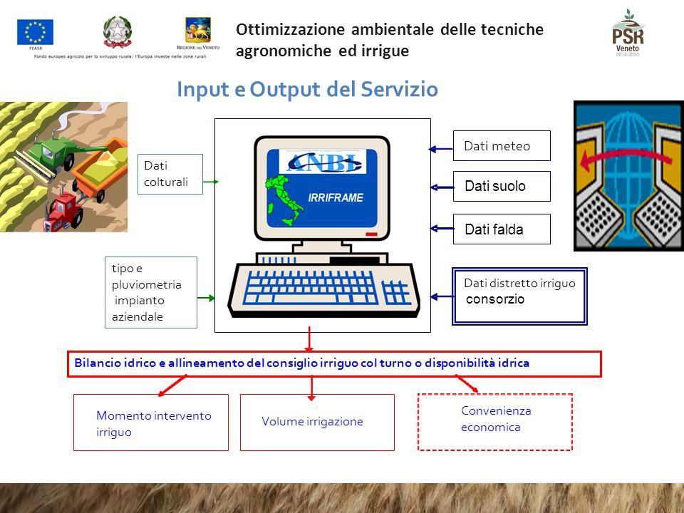 Input e Output del Servizio