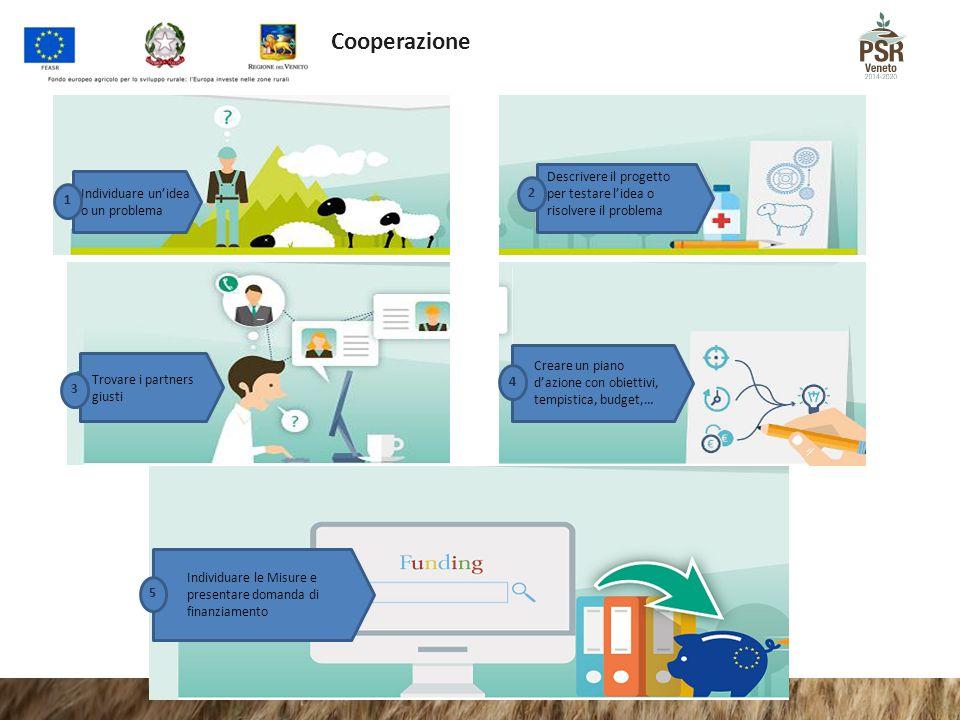 Cooperazione Individuare un'idea o un problema. 1. Descrivere il progetto per testare l'idea o risolvere il problema.