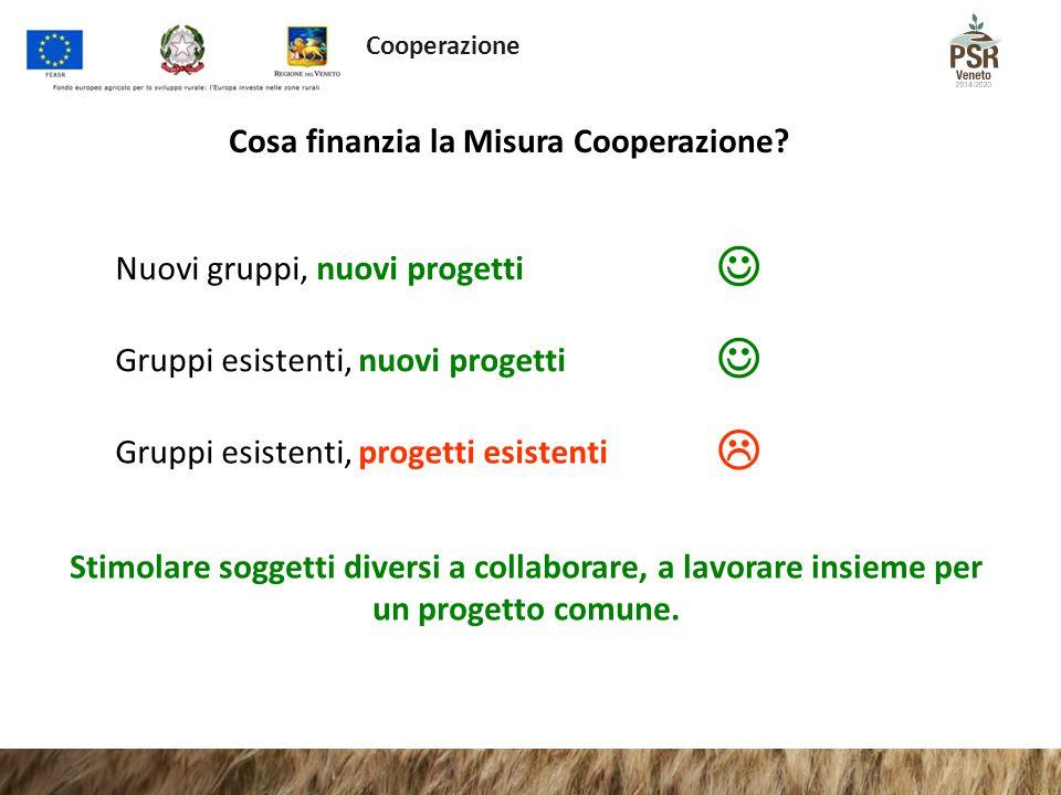 Cosa finanzia la Misura Cooperazione