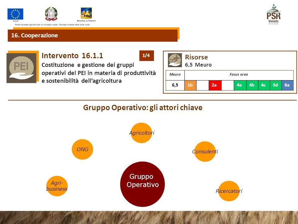 Gruppo Operativo: gli attori chiave