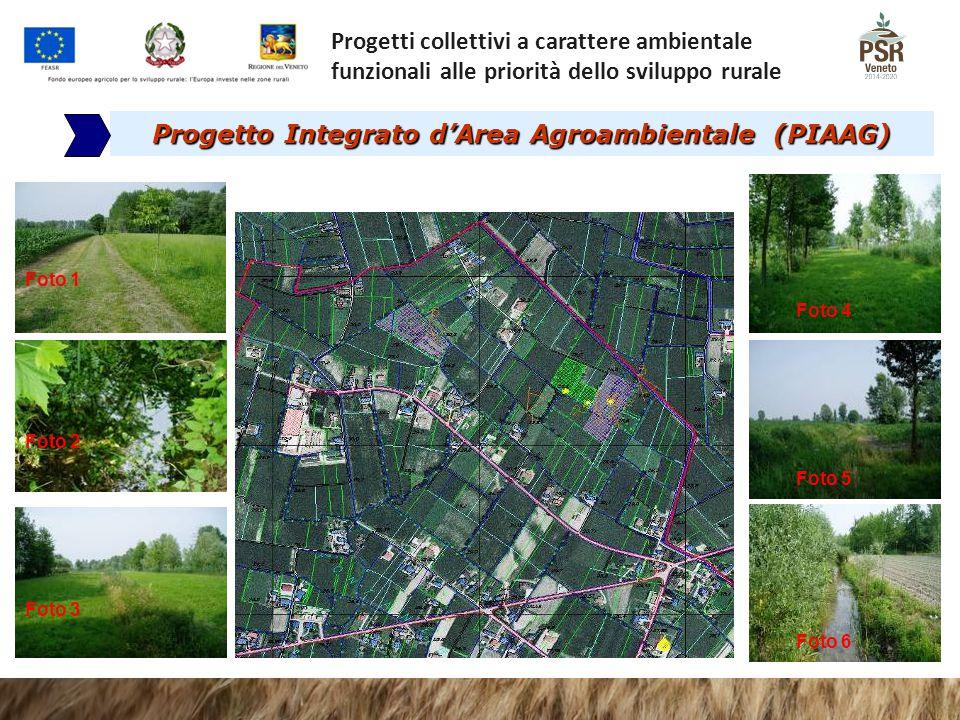 Progetto Integrato d'Area Agroambientale (PIAAG)