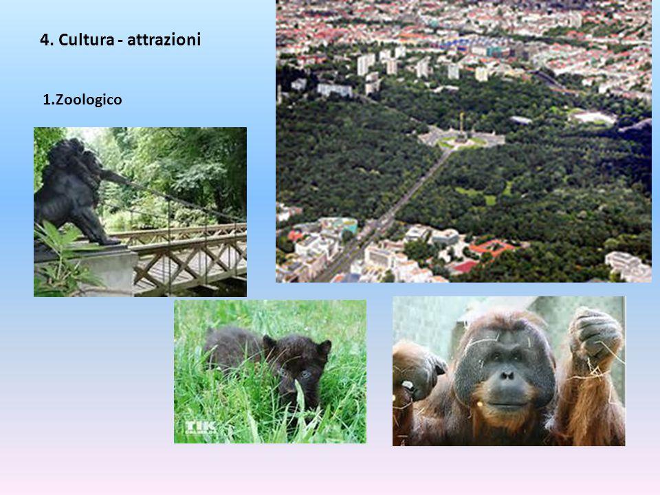 4. Cultura - attrazioni Zoologico