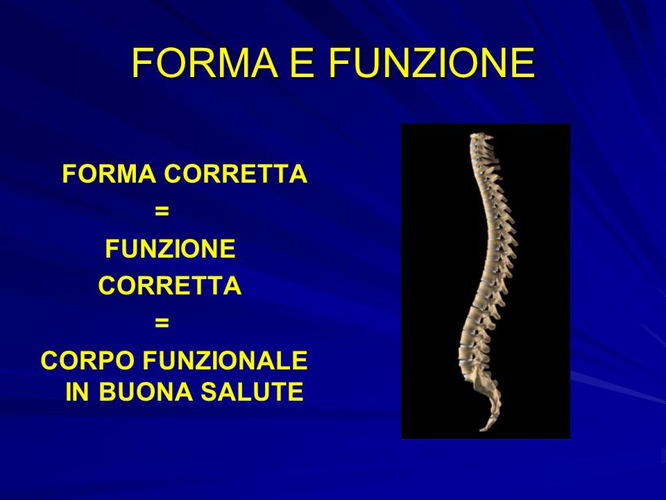 FORMA E FUNZIONE FORMA CORRETTA = FUNZIONE CORRETTA