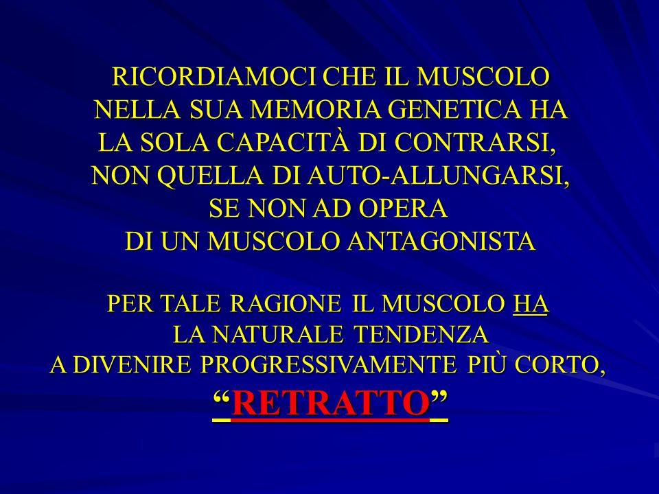 RETRATTO RICORDIAMOCI CHE IL MUSCOLO NELLA SUA MEMORIA GENETICA HA