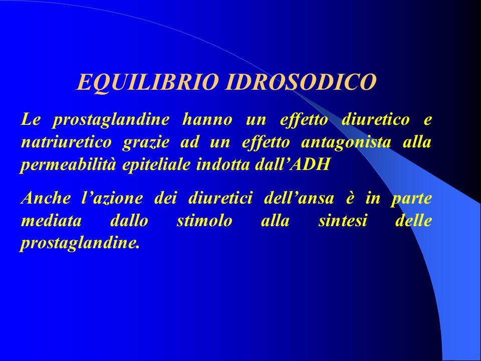 EQUILIBRIO IDROSODICO