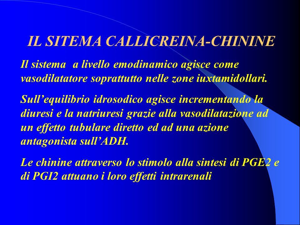 IL SITEMA CALLICREINA-CHININE