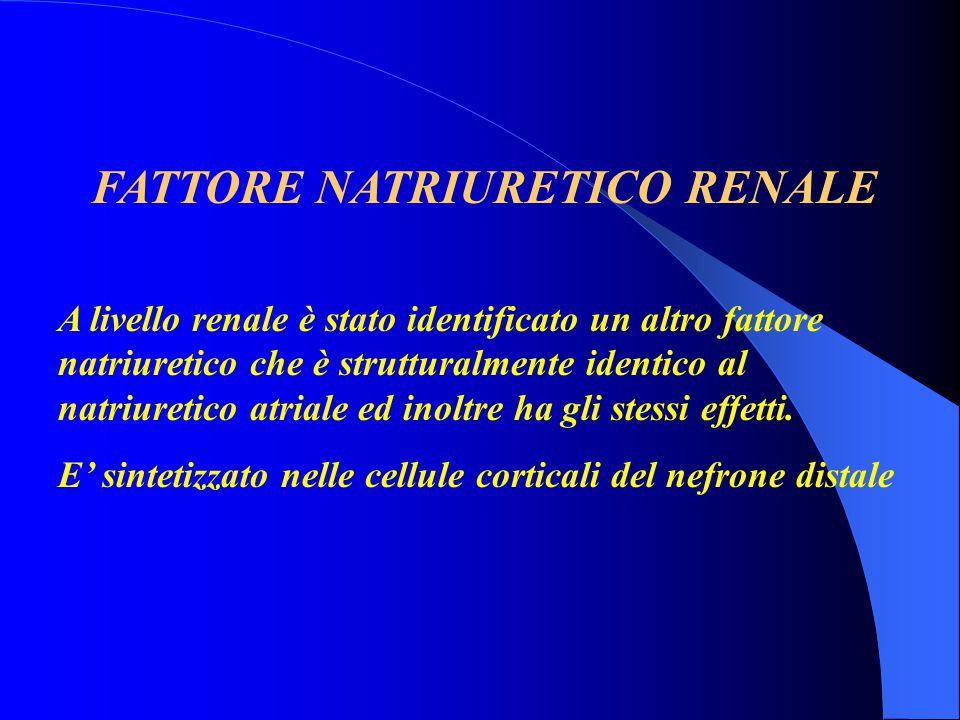 FATTORE NATRIURETICO RENALE