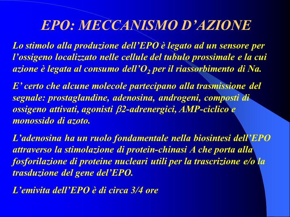 EPO: MECCANISMO D'AZIONE