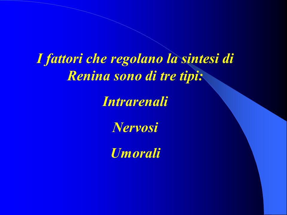 I fattori che regolano la sintesi di Renina sono di tre tipi: